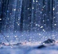 Как собирать дождевую воду на даче