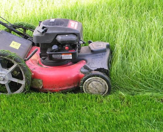 Как стричь газон