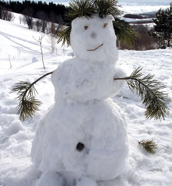Фото снеговиков
