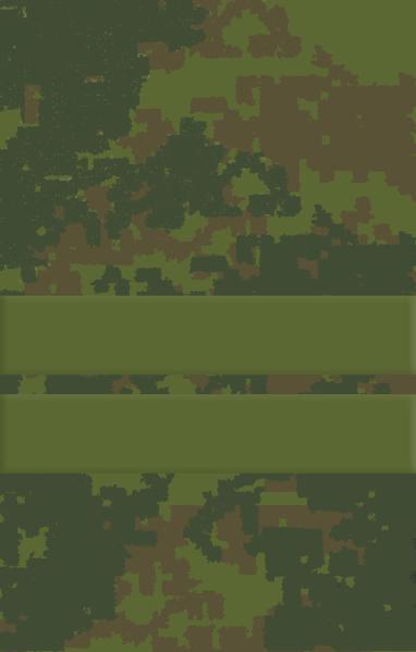 Звния. Младший сержант