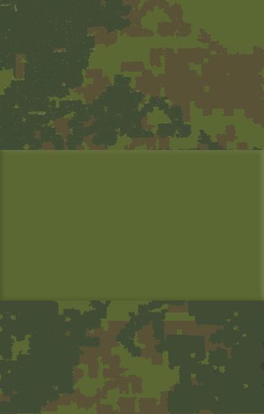 Звания. Старший сержант