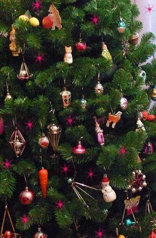Новогодние елки. Фото.