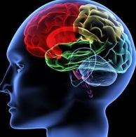 Опухоль мозга: Найден новый метод лечения менингиомы