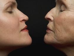 Японским ученым удалось остановить старение